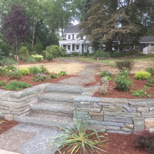 LargeFront Lawn Project